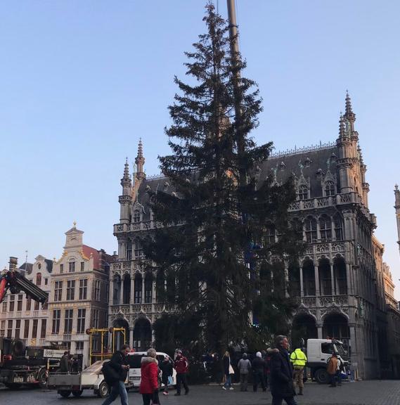 Kerstboom Op De Grote Markt Stad Brussel