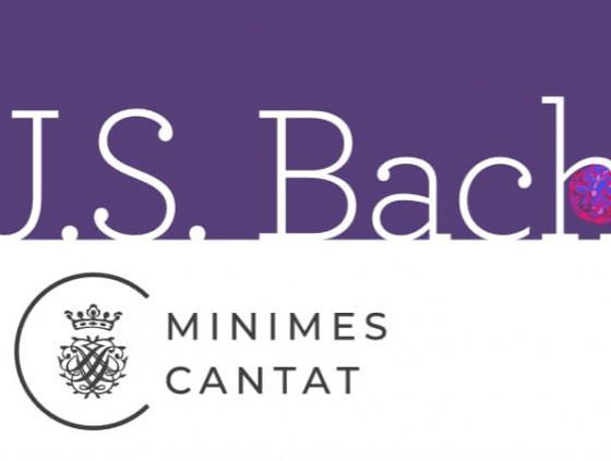 Brusselse Orgel Zomer
