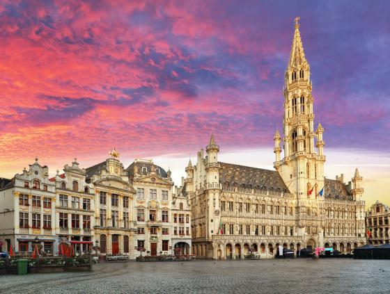 Kandidatuuroproep. Vertegenwoordigers in de Brusselse Raad voor Culturele Diversiteit (BRCD)