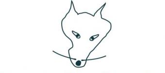 Le Wolf - animatie en workshops