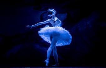 Het Zwanenmeer - Moscow City Ballet