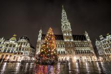 Brussels by Lights - kerstboom Grote Markt - klik om te vergroten